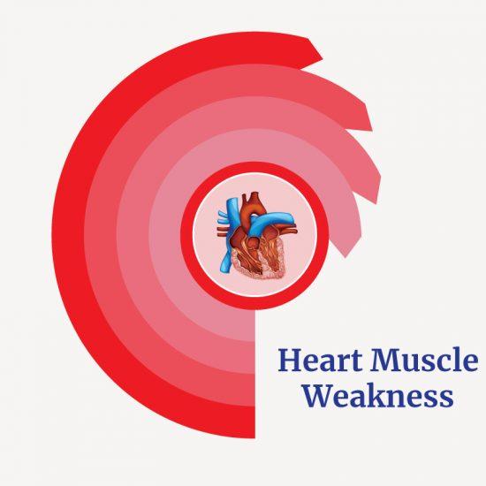 Treatment for Cardiomyopathy