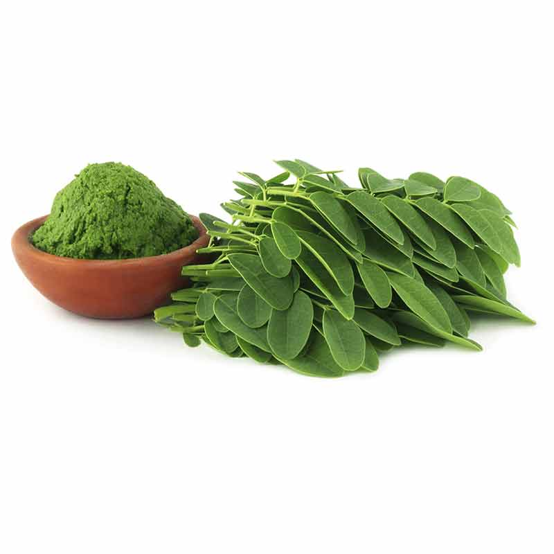 Moringa And Hepatitis B Virus