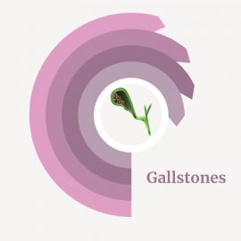 treatment for gallstones
