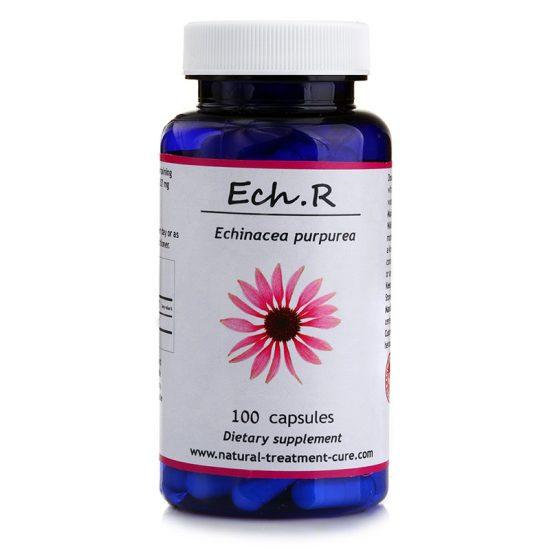 echinacea root