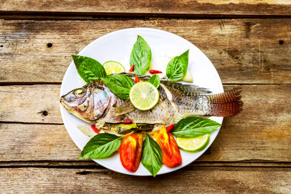 How Can Tilapia Fish Help with MS