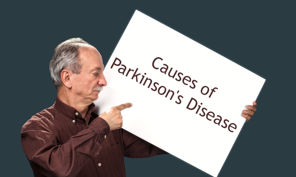 What Are the Causes of Parkinson's Disease?